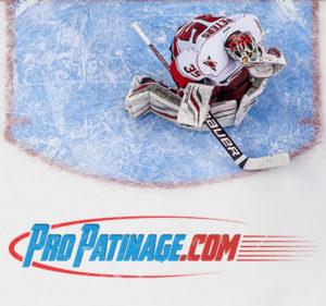 réalisation du logo de la société pro-patinage.com